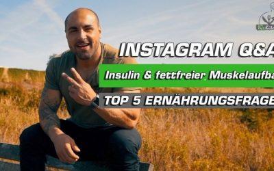 Macht Insulin dick? Ist Mahlzeitentiming wichtig? Aufbau mit Low Carb? – INSTAGRAM Q&A
