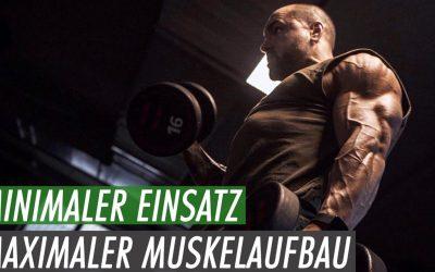 Minimaler Einsatz – Maximaler Muskelaufbau – Mit diesem Trainingsplan gehts!