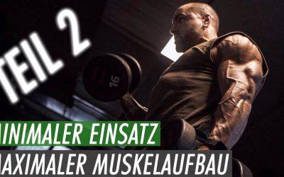 Schneller Muskelaufbau – Effektiver Ganzkörper Trainingsplan